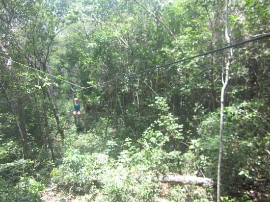 Edventure Tours: Ziplining