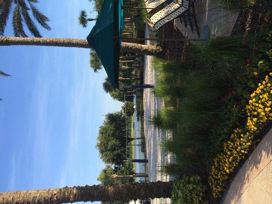 JW Marriott Orlando, Grande Lakes : beach volleyball court