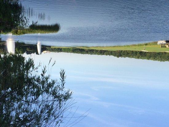 JW Marriott Orlando, Grande Lakes : beautiful around