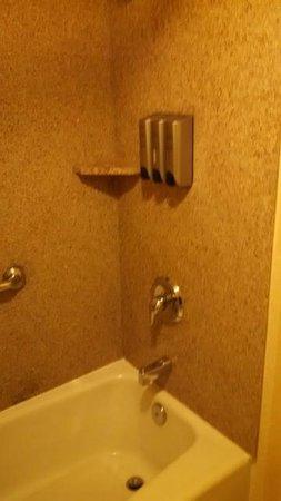 Best Western Plus Hill House: Bulk shampoo/conditioner/body wash.