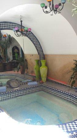 Riad Les Lauriers Blancs: pool/courtyard