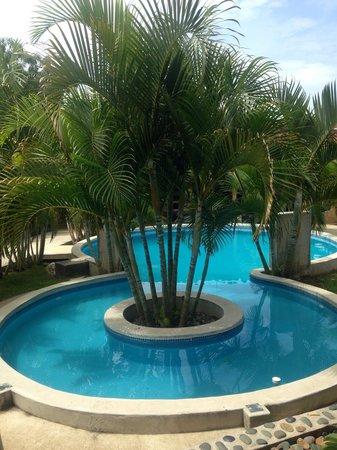 Casa Lajagua : Buena piscina