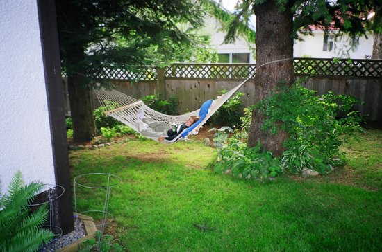 Jacquie Gordon's Bed and Breakfast : Relax in the Hammock in the summer shade
