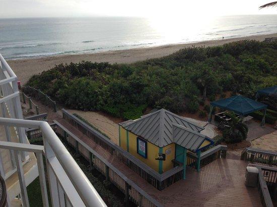 Hutchinson Island Marriott Beach Resort & Marina: View of beach from oceanfront room