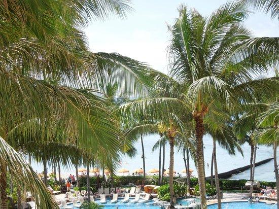 Sheraton Waikiki: 2つあるプールの一つ