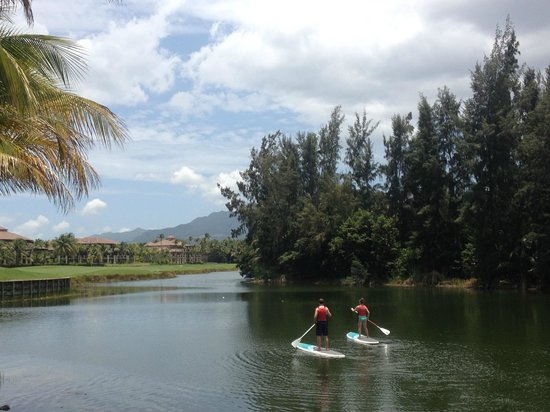 The St. Regis Bahia Beach Resort: Paddle Boarding around the bird sanctuary with the rainforest in the background