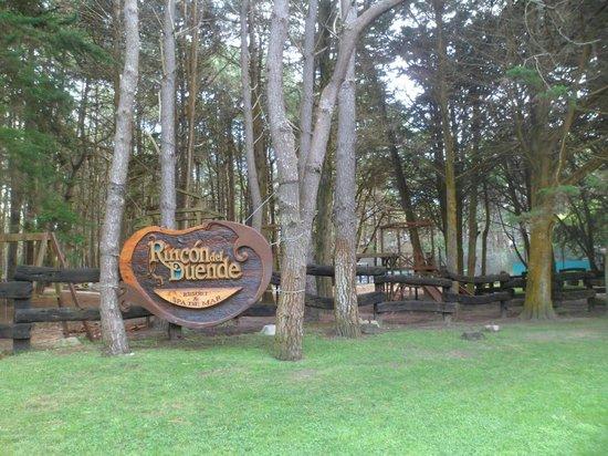 Rincon del Duende: bosque