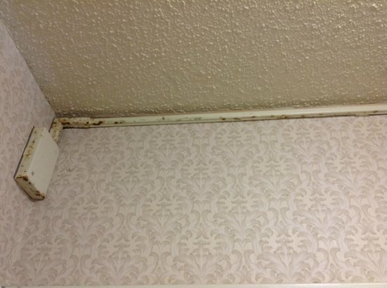 Howard Johnson Inn And Conference Center Salem: Mold on ceiling