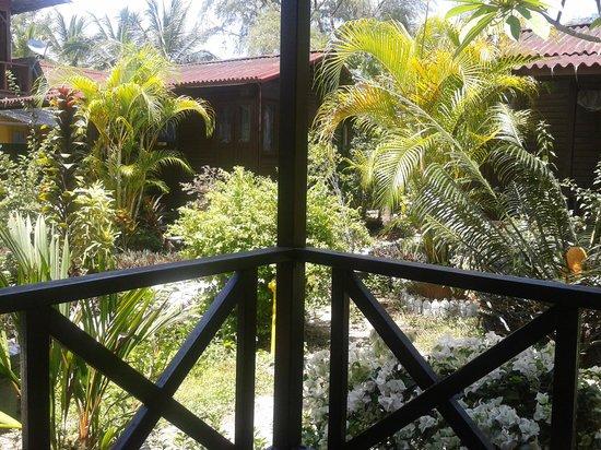Bayu Dive Lodge: Garden vie cottage path