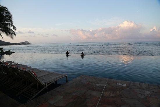 Sheraton Waikiki: Edge pool as dawn