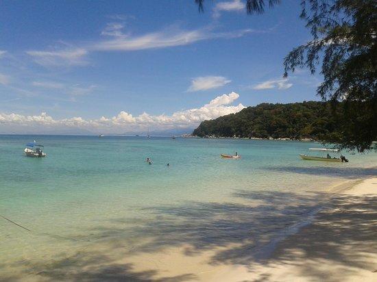 Bayu Dive Lodge : No comment ;-)