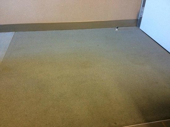Aloft Dulles Airport North: Gross Stains all over the carpet.