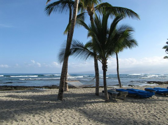 Mauna Lani Bay Hotel & Bungalows: Beach Area