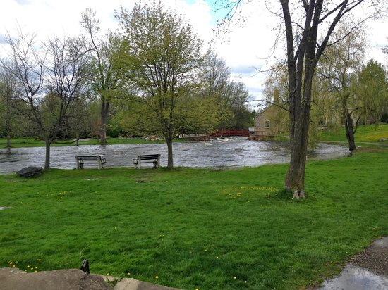 FiddleHeads Bar and Grill: View of the park from the restaurant