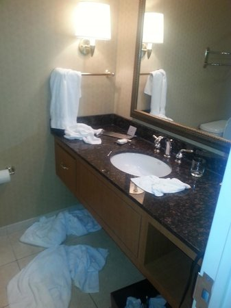 Doubletree Hotel Houston Downtown: nice bathroom