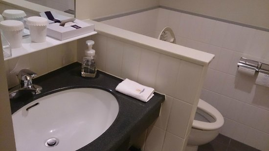 Hotel Clubby Sapporo: 洗面台のすぐ隣がトイレ