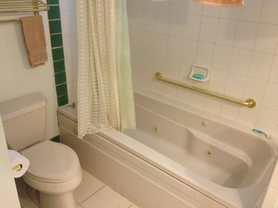 Fairfax Inn Bed and Breakfast: Great bathtub!