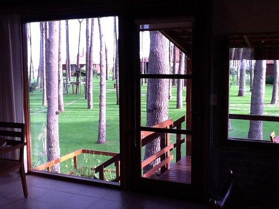 Il Belvedere: Vista desde la cabaña