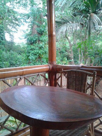 Pagdayon Traveler's Inn : the only sound you will hear will be birds chatting :)