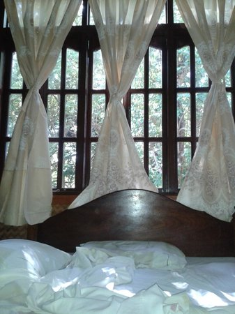 Pagdayon Traveler's Inn : be one with nature as you open your curtains