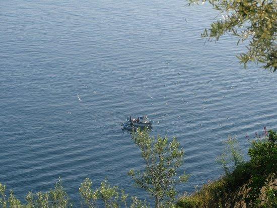 Grand Hotel Riviera : Утренняя рыбалка