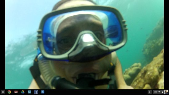 Fish Tobago Guesthouse: Underwater selfy