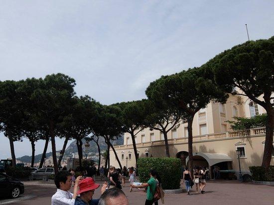 Prince's Palace : 大公宮殿・・・植栽