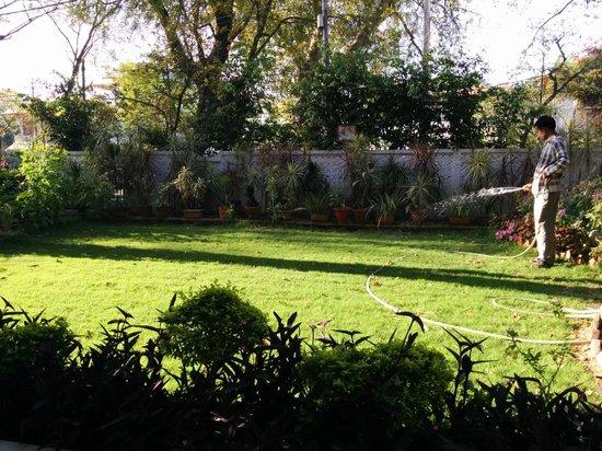 Sunshine Villa : Garden