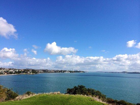 Cycle Auckland hire bike trip. Brilliant!!