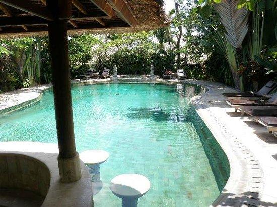 Tonys Villas & Resort : pool