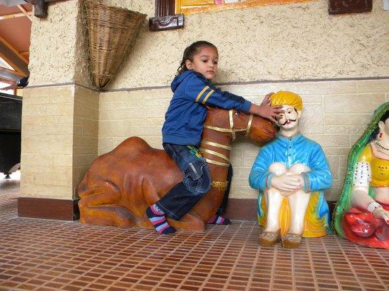 Whispering Valley Resorts: Dhyaan Enjoying on Camel