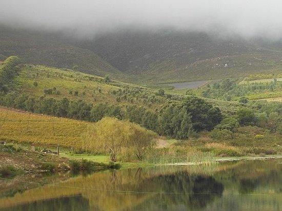Hermanuspietersfontein Cottages: Views
