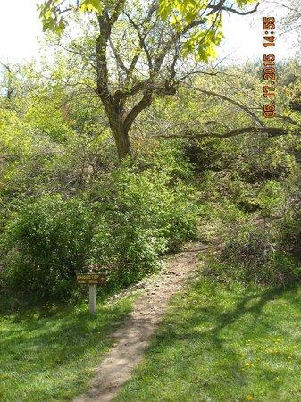 Ayres Natural Bridge: Steep path to top of bridge