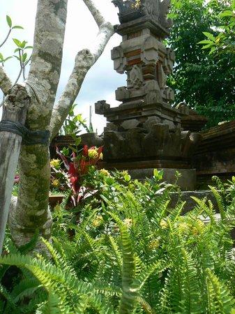 Umajati Retreat: beautiful garden of Umajati