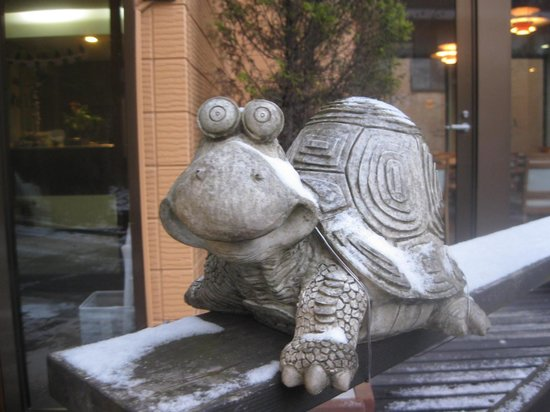 Annex Turtle Hotori An : Welcoming turtle