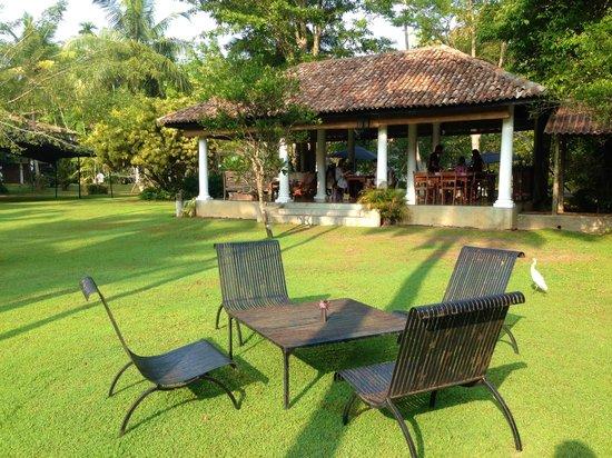 Nisala Arana : Dining Area
