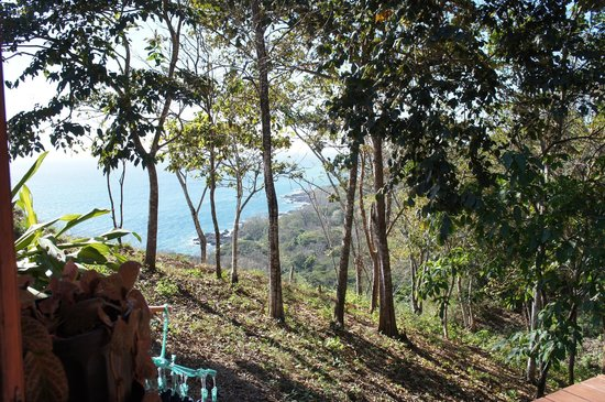 Montezuma Heights: view from the cabin balcony