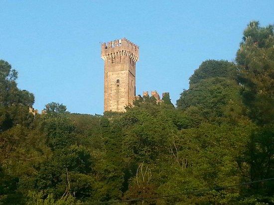 Borghetto sul Mincio: Il castello. .. vista dal borghetto