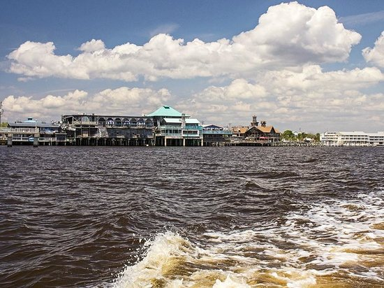 Tidewater Tours: View to Cedar Key