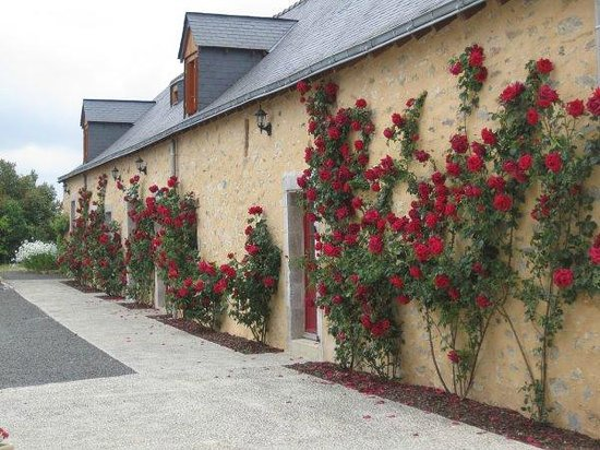 Le Domaine des Hallais : Roses cover the outside of the main building in summer