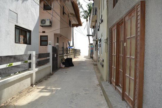 Lazy Dog Bed & Breakfast: Down the lane to the beach.