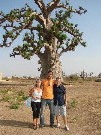 Royal Horizon Baobab : baobab et guide sénégalais