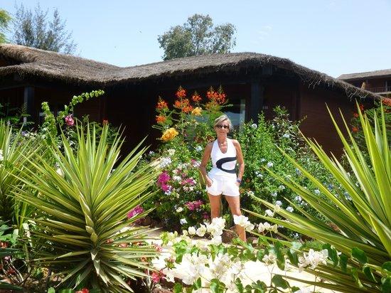 Royal Horizon Baobab : jardin devant bungalow