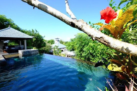 Banyan Tree Ungasan, Bali: VILLA