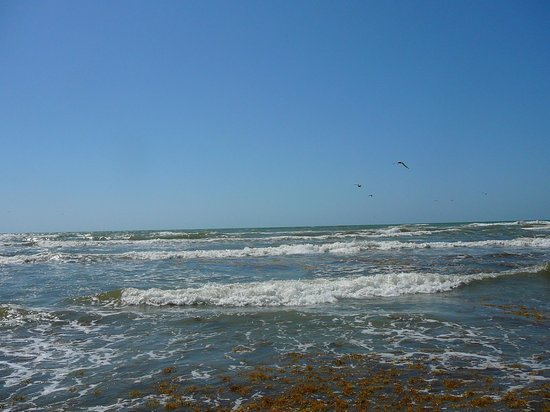 Island Hotel Port Aransas : Beaches are close to the hotel