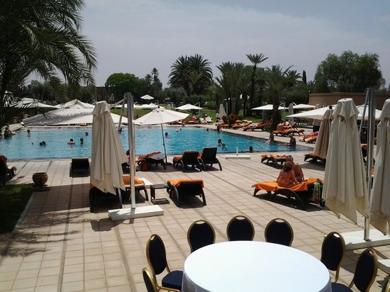 Pullman Marrakech Palmeraie Resort and Spa : piscine
