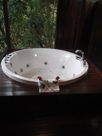 Bunga Raya Island Resort & Spa : Treetop villa