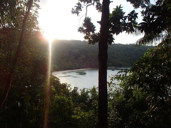Bunga Raya Island Resort & Spa : View from treetop villa