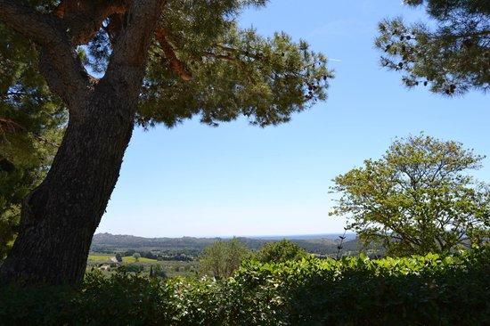 Le Mas d'Aigret: Vue de la terrasse