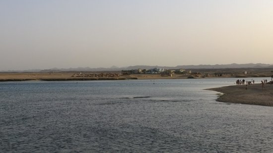 Marina Lodge at Port Ghalib : Hotel and beach from other side